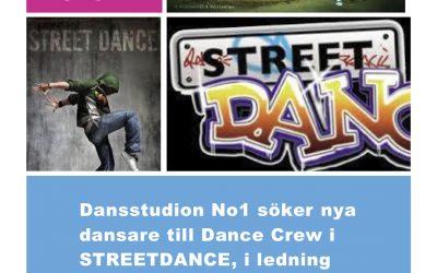 AUDITION till No.1's Street Crew!